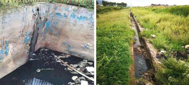 垃圾渗滤液违规排放